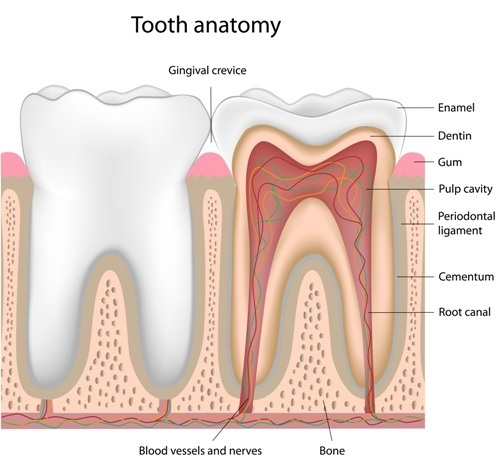 What Can You Do About Painful Sensitive Teeth